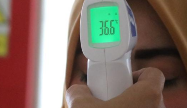Best Digital Thermometers